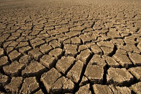 Dry cracked soil surface, horizontal full frame Imagens