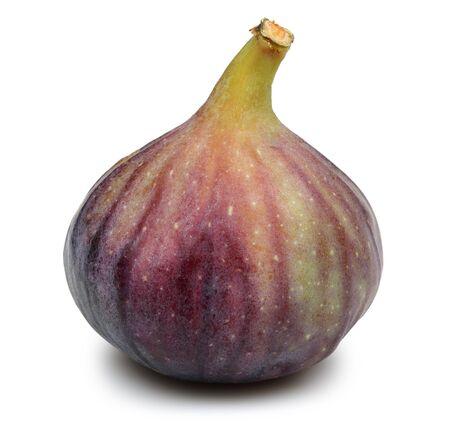 Fresh purple fig fruit isolated on white background
