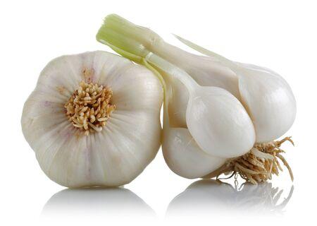 Fresh garlic bulbs isolated on white background