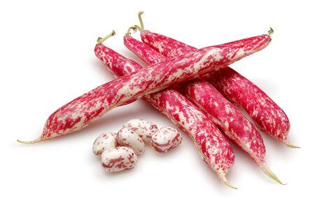Fresh pinto beans isolated on white background Stok Fotoğraf - 129944601