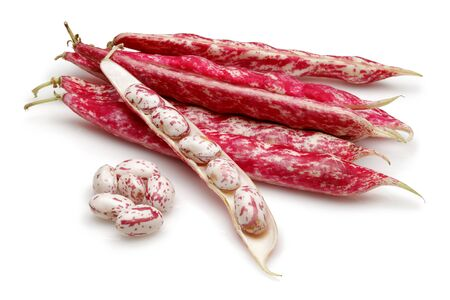 Fresh pinto beans isolated on white background Stok Fotoğraf - 130426264