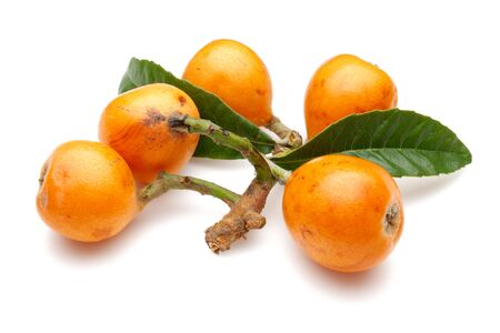 Group of ripe loquat fruits isolated on white background Imagens