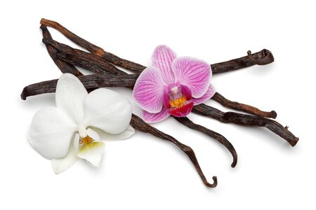 Vanilla sticks with orchid flower isolated on white background