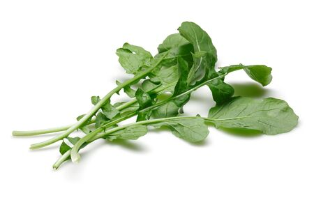 Bunch of fresh rucola isolated on white background