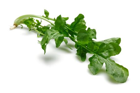 Bunch of fresh rucola isolated on white background 版權商用圖片 - 141223055