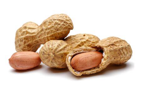 Peanut isolated on white background, macro shot