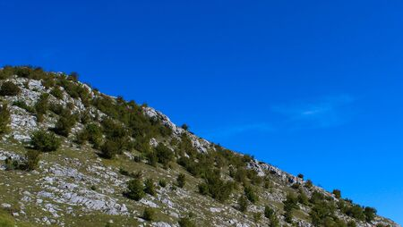 The concept of a mountain desert. Shrubs on a hill with stones. On the way to the mountain Bjelasnica.