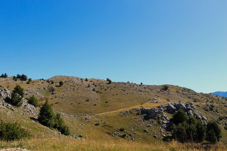 Mountain karst with a some grass and some trees. Bjelasnica Mountain, Bosnia and Herzegovina.