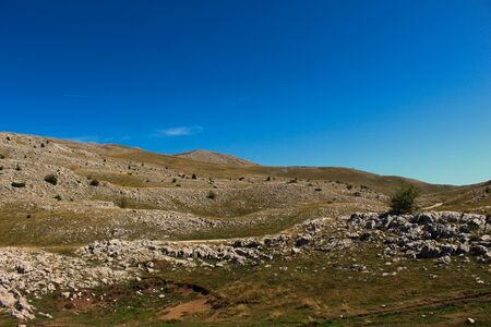 A meadow with a rugged landscape. Bjelasnica Mountain, Bosnia and Herzegovina.