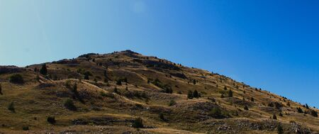 Banner of a wavy hill with planted conifers with a lot of stones. Hill on Bjelasnica mountain, Bosnia and Herzegovina.