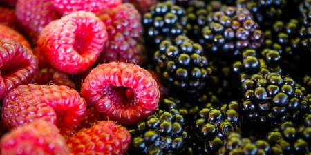 Raspberries and blackberries. Banner. Close up. Macro. Zavidovici, Bosnia and Herzegovina.