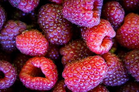 Full frame raspberry view. Top view. Zavidovici, Bosnia and Herzegovina.