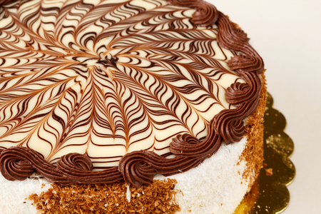Delicious cake with cocoa and vanilla tiers, white and milk chocolate icing, decorated with shredded coconut and biscuits on the side. Stock Photo