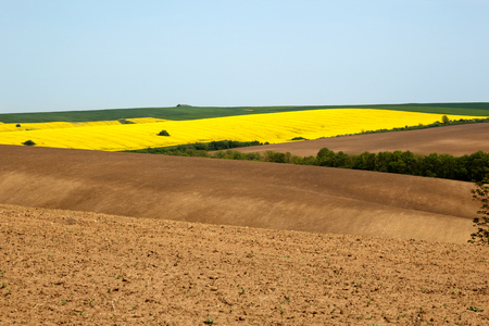 Agricultural background of ploughed up and cultivated fields with variety of crops
