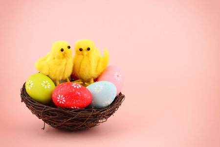 Easter greeting card with colorful painted eggs and two cute decorative chickens in a nest on a pink background with copy space