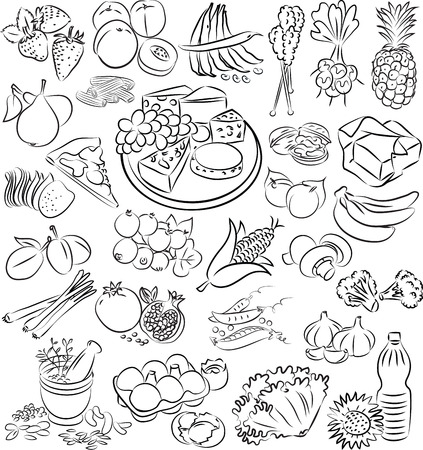 romaine lettuce: vector illustration of food collection in black and white