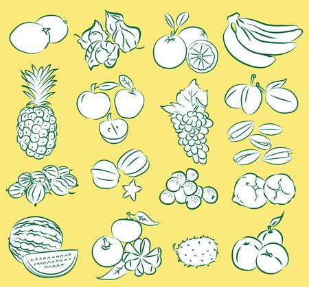 rasberry: Vector Illustration of fruit icon set Illustration