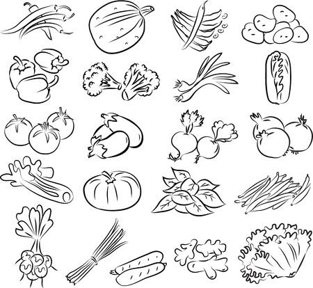vector illustratie van groenten collectie in zwart-wit Stock Illustratie