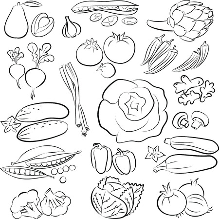 Vector Illustration of vegetables in black and white Illustration