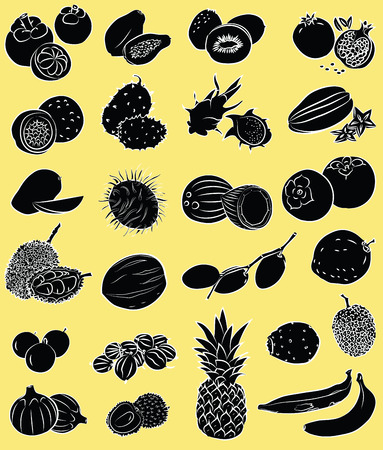 prickly pear: Vector illustration of tropical fruits in black and white Illustration