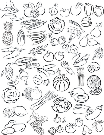 pumpkin tomato: vector illustration of fruits and vegetables collection in black and white