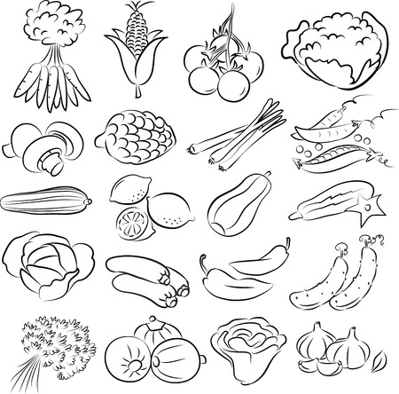 raisin: vector illustration of vegetables collection in black and white Illustration