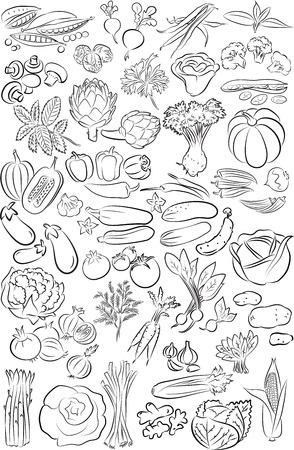 ライン アート モードで野菜のベクトル イラスト