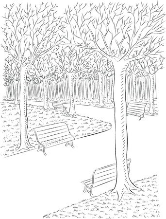 Vector illustration of park in autumn in line art mode