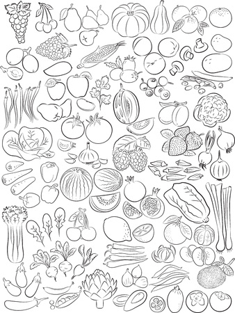 Vector illustration of fruits and vegetables in line art mode
