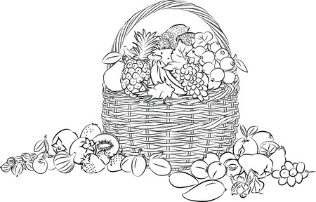 dates fruit: illustration of basket full of fruits in line art mode