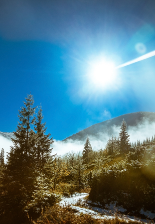 saddened: types of mountain landscapes in the Carpathian mountains Stock Photo
