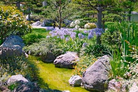 Beautiful garden with stream