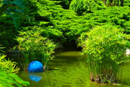 Beautiful garden with pond photo
