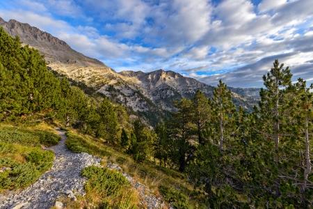 olimpo: Camino a la cima de la monta�a Olympus en Grecia Foto de archivo