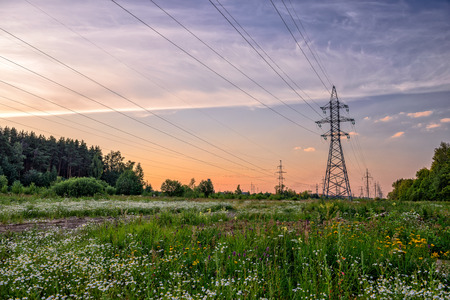 High voltage power line in flower meadow over sunset sky photo