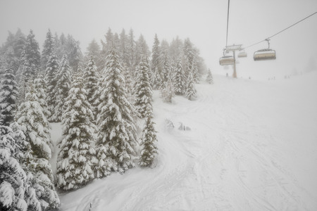 chairlift: Winter forest and chairlift in snowfall at alpine ski resort