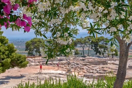 Blossoming trees and Phaistos palace archaeological site on Crete