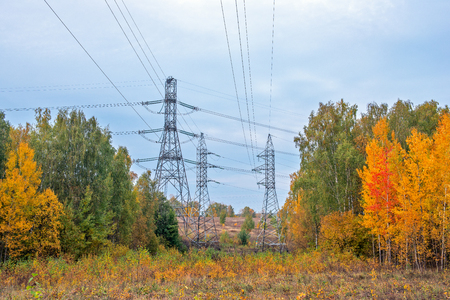 High voltage power lines in autumn forest