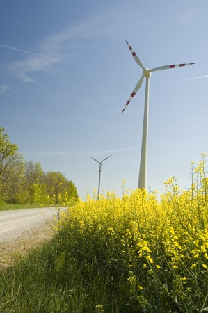 Wind turbines and rapeseed field Stock Photo - 1471158