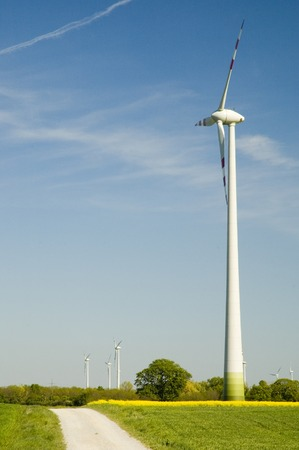 energies: Wind turbines and rapeseed field