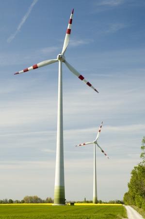Wind turbines and rapeseed field Stock Photo - 1471118