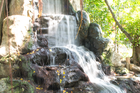 lightsome: the waterfall in the crocodile farm