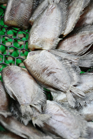 Thai Dried Salted Fish - Snakeskin gourami  photo