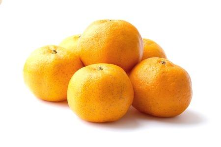 citrus  sinensis: Orange, Mandarin Orange, Citrus sinensis Stock Photo