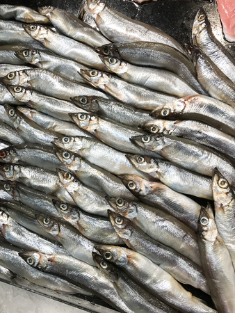 lanceolatus: Closed up Shishamo fish, smelt fish in the food shop Stock Photo