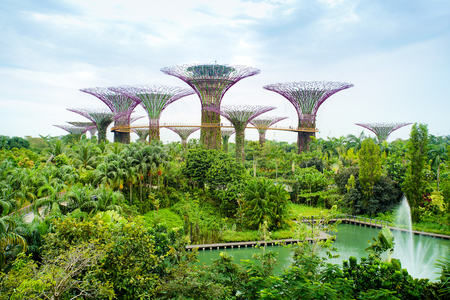 MARINA BAY, SINGAPORE - JAN 20, 2017: Landscape of Gardens by the bay in Singapore. Editorial