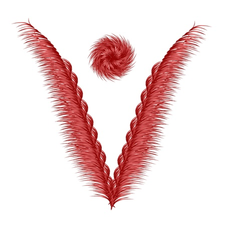 feathery: Feathery Red Leafs Stock Photo