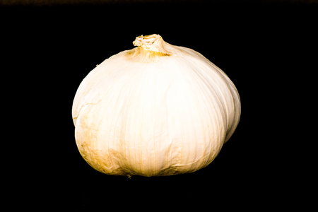 The bulb of garlic on the black background. The garlic is isolated on black and a clipping path is provided for easy extraction.