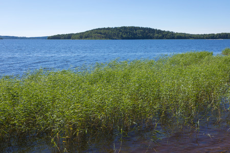 The shore of the Ladoga lake in Russia with the can in the water with the mountains and the forest on the skyline in the sunny summer day Stock Photo