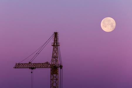 Silhouette of the crane Stockfoto